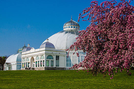 Buffalo Botanical Gardens North Lawns by Don Nieman