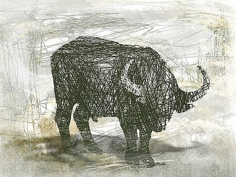 Buffalo Bull by Andre Pillay