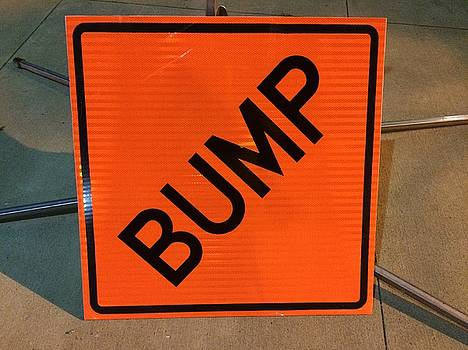 Buffalo Bump Sign by Mark Weber