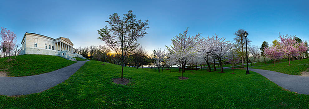 Chris Bordeleau - Buffalo Cherry Blossoms 3