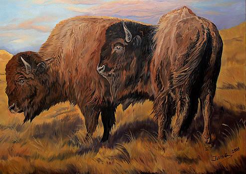 Buffalo grass by Jana Goode