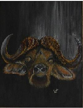 Buffalo Head by Linda Ferreira