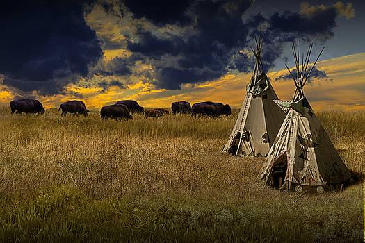 Randall Nyhof - Buffalo Herd alongside Teepees on the Prairie