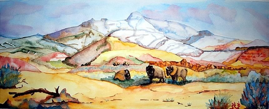 Buffalo Land by Gerald Carpenter