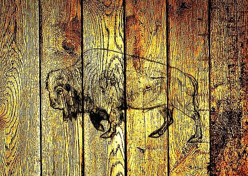 Buffalo on Barn Wood by Larry Campbell