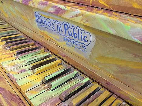 Buffalo Pianos In Public by Mark Weber