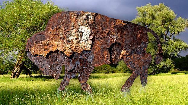 Buffalo Stroll by Marvin Blaine