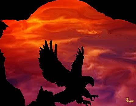 Buffalo Sunset by Will Logan