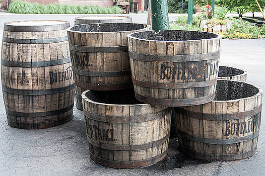 Buffalo Trace Barrels by John Daly