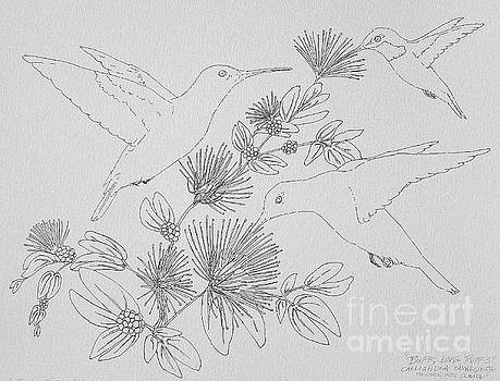 Buffs Love Puffs - pen and ink by Sue Bonnar