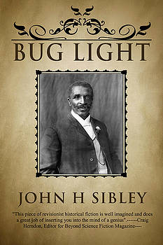 Bug Light by John Sibley
