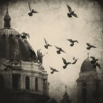 Bugle Blowing Church Angel And Birds by Gothicrow Images