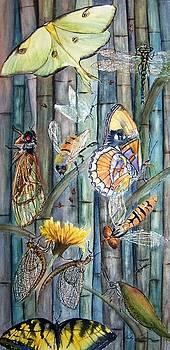 Vicky Lilla - Bugs N Bamboo