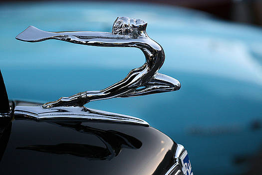 Buick Beauty by Chad Myers