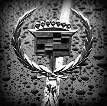 Emily Kelley - Buick Cadillac