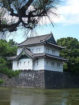 Building at the Imperial Palace Complex, Tokyo by Constance DRESCHER