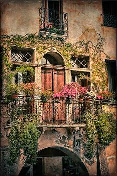 Building Exterior in Venice by Terri Roncone