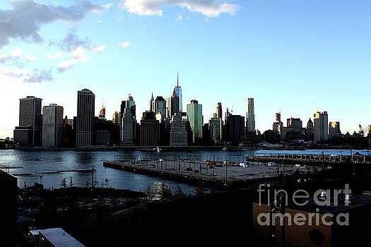 Building New York by Donato Iannuzzi