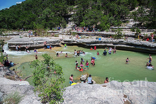 Herronstock Prints - Bull Creek is listed as one of Austins best swimming holes and safe from the brutal Texas heat