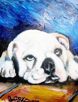 Jon Baldwin  Art - Bull Dog Puppy