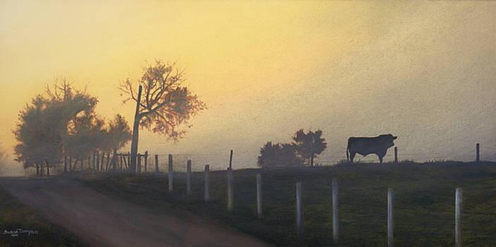 Bull In The Fog by Susan Thompson