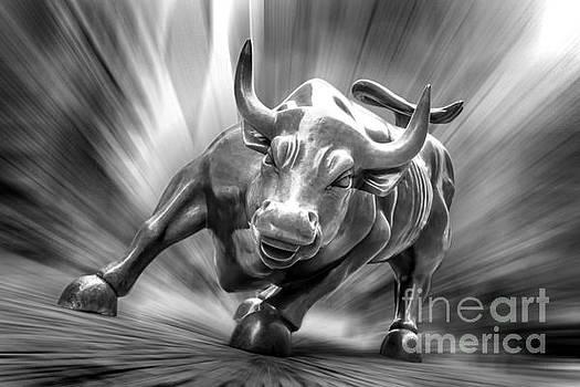 Bull Market by Az Jackson