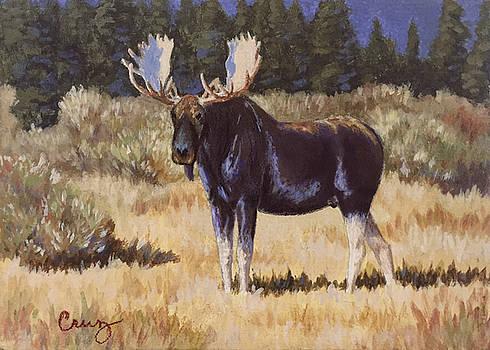 Bull Moose Jackson Wyoming by Linda Cruz