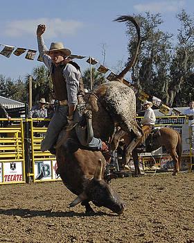 Bull Rider by Keith Lovejoy