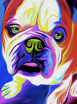 Bulldog #101 by Nixo by Nicholas Nixo