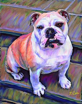 Bulldog by Karen Derrico