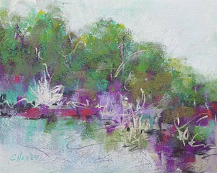 Bullfrog Paradise by Cynthia Haase