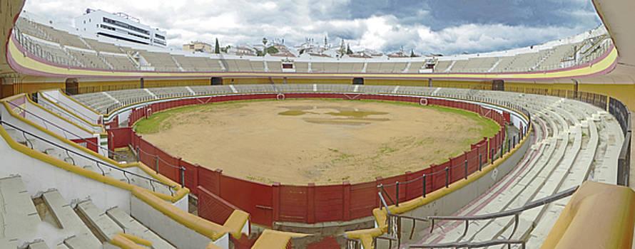 Bullring Panorama by Alan Socolik