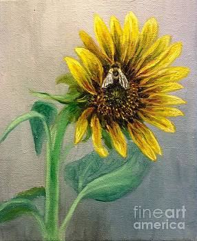 Bumble bee on sunflower by Hilary England