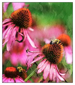 Bumble Bees 1 by Scott Fracasso