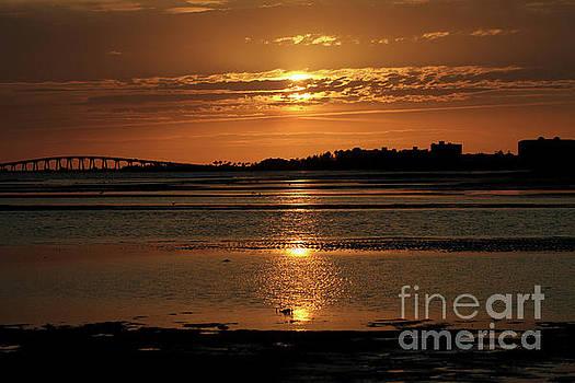 Bunche Beach Sunset by Meg Rousher