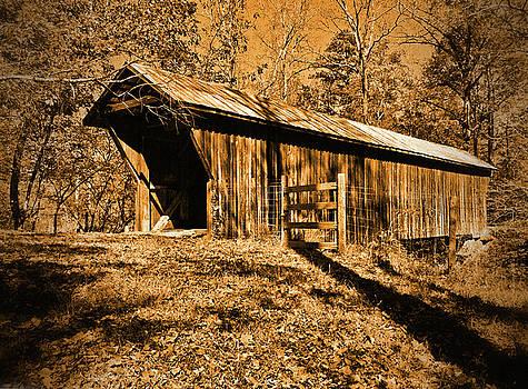 Bunker Hill Covered Bridge by Ben Prepelka