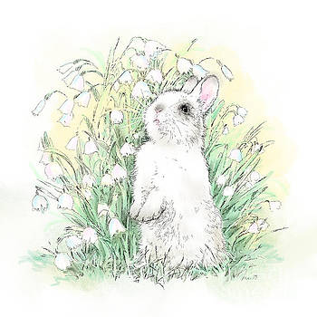 Laurie Musser - Bunny in White