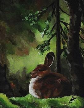 Bunny by Kim Selig