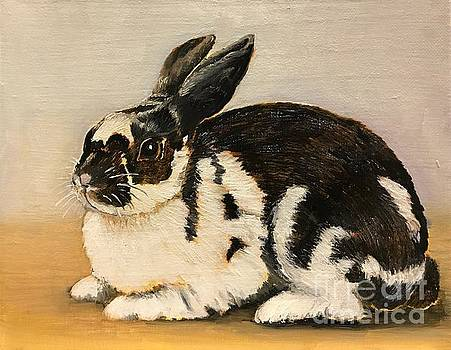 Bunny Rabbit by Boni Arendt