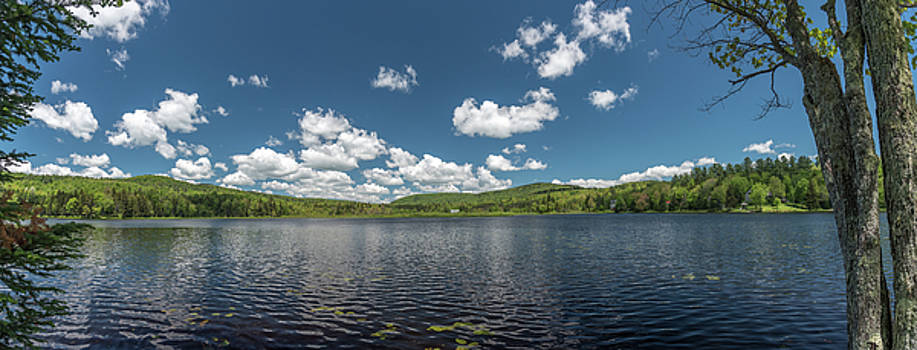 Burbee Pond by Guy Whiteley
