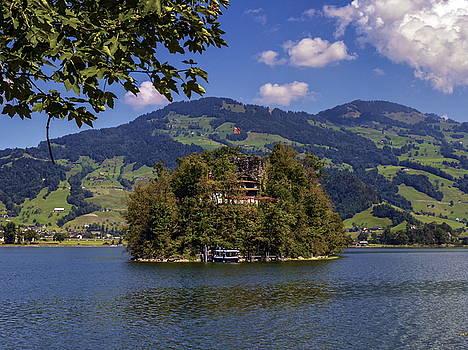 Elenarts - Elena Duvernay photo - Burgruine castle on Schwanau island in lake Lauerz, Schwyz, Switzerland