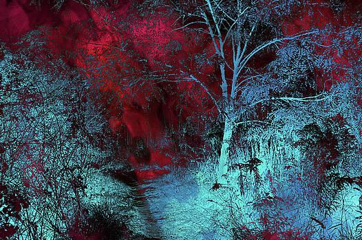 Jenny Rainbow - Burgundy Red MoonLight