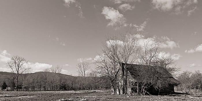 Buried Memories by Ron Dubin