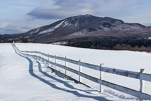 Burke and Fence Mid-Winter by Tim Kirchoff