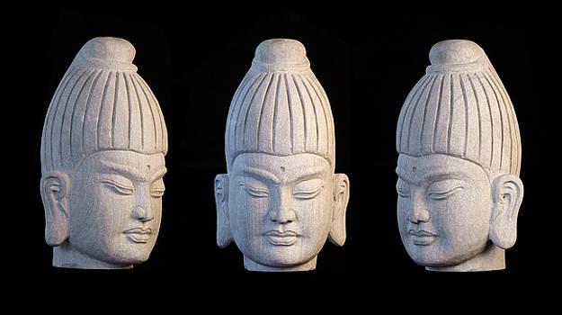 Burmese 31 by Terrell Kaucher