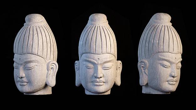 Burmese 32 by Terrell Kaucher