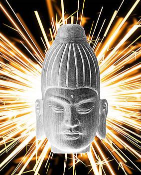 Burmese Enlightenment  by Terrell Kaucher