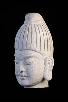 Burmese L by Terrell Kaucher