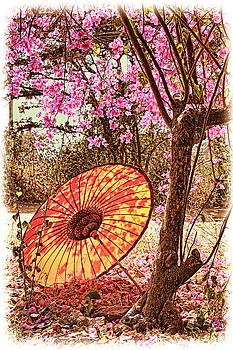 Dennis Cox - Burmese Spring