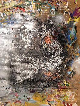 Anne Cameron Cutri - Burn Crackle Fizz